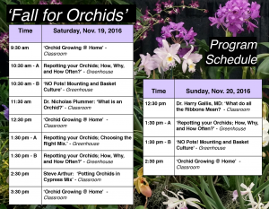 schedule-poster